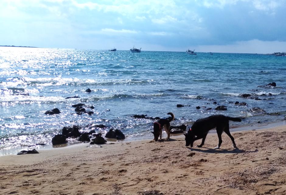 Porto Cesareo in Ottobre - Riviera di Levante / Spiaggia di Porto Cesareo
